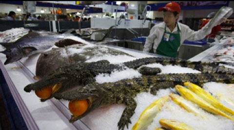 From Buzzfeed's '16 Items They Only Sell at Chinese Wal-Marts' -- crocodiles.